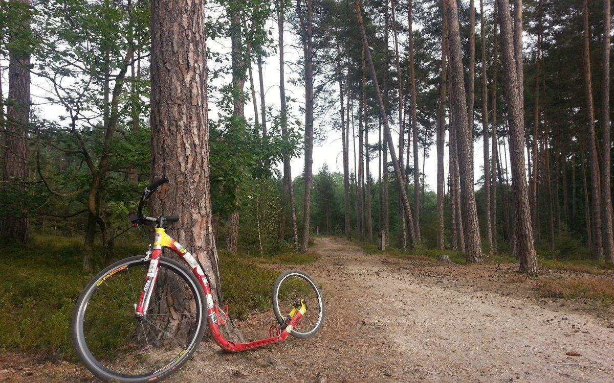 Silniční koloběžka zvládne les, pole a překvapivě i asfalt