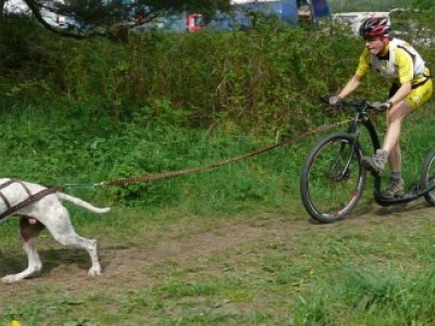Scooterjoring - jednodušše koloběžka se psem