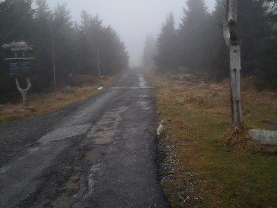 Horší asfalt směrem k Petrovce
