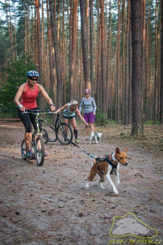 Na velikosti psa ani koloběžky nezáleží - jen na vůli se hýbat!